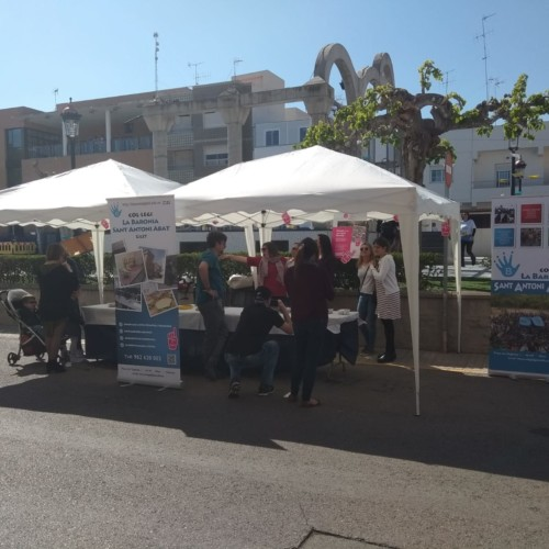 CBSAA-1819 Trobades d'Escoles en Valencià (29)